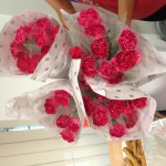 Thank you Shirine, for the lovely carnations!
